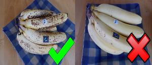 reife unreife Bananen