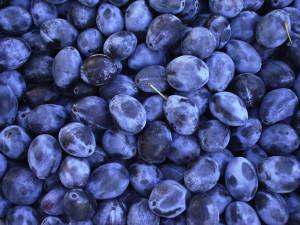 Erntezeit im Rekordobstjahr: Zeit für Fruchtleder mit dem Rohkost-Dreamteam